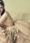 【ANTEPREMA】CD0349の画像3縮小