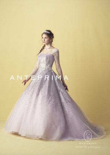【ANTEPREMA】CD0564
