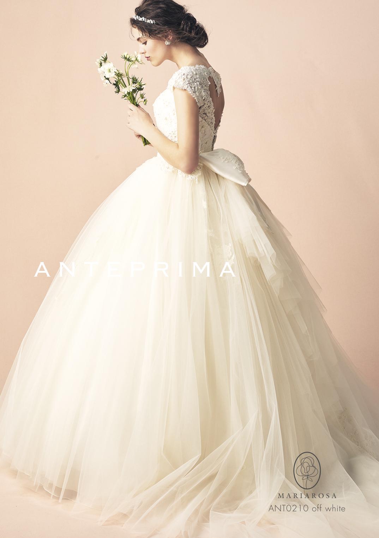 取り寄せ商品【ANTEPRIMA】ANT0210 off white