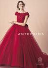 取り寄せ商品【ANTEPRIMA】ANT0210 redの画像1縮小